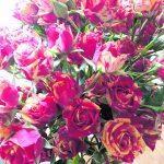 btw-verhoging raakt bloemist
