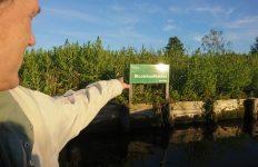 duurzame excursie met DGAalsmeer