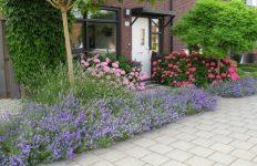 fotowedstrijd tuinen