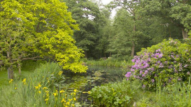 Open dag tuin Bram de Groote