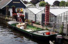 Aalsmeer (bijna) klaar voor Flower Festival