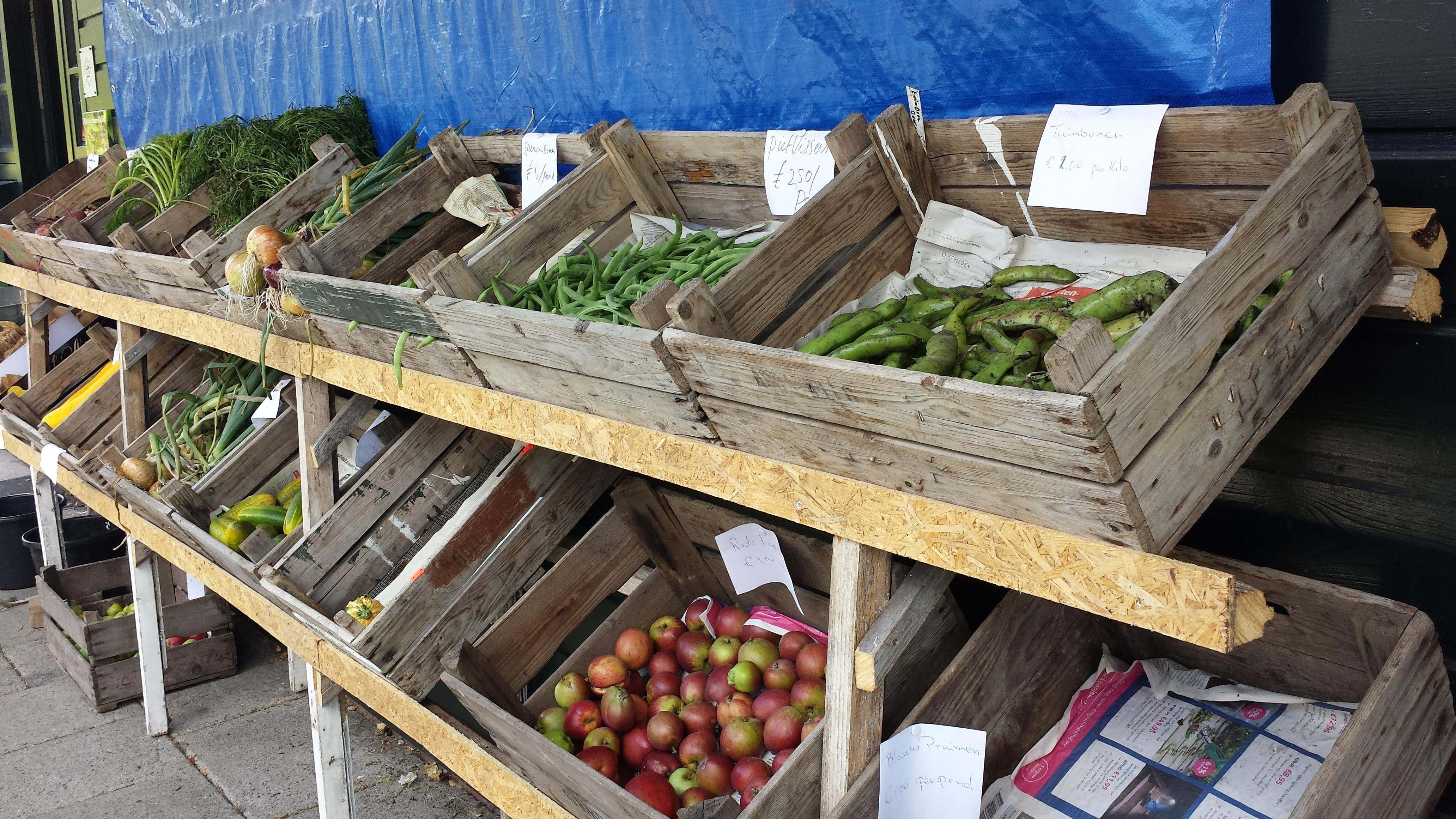 H eerlijke groenten van historische tuin nieuwe meerbode for Groenten tuin