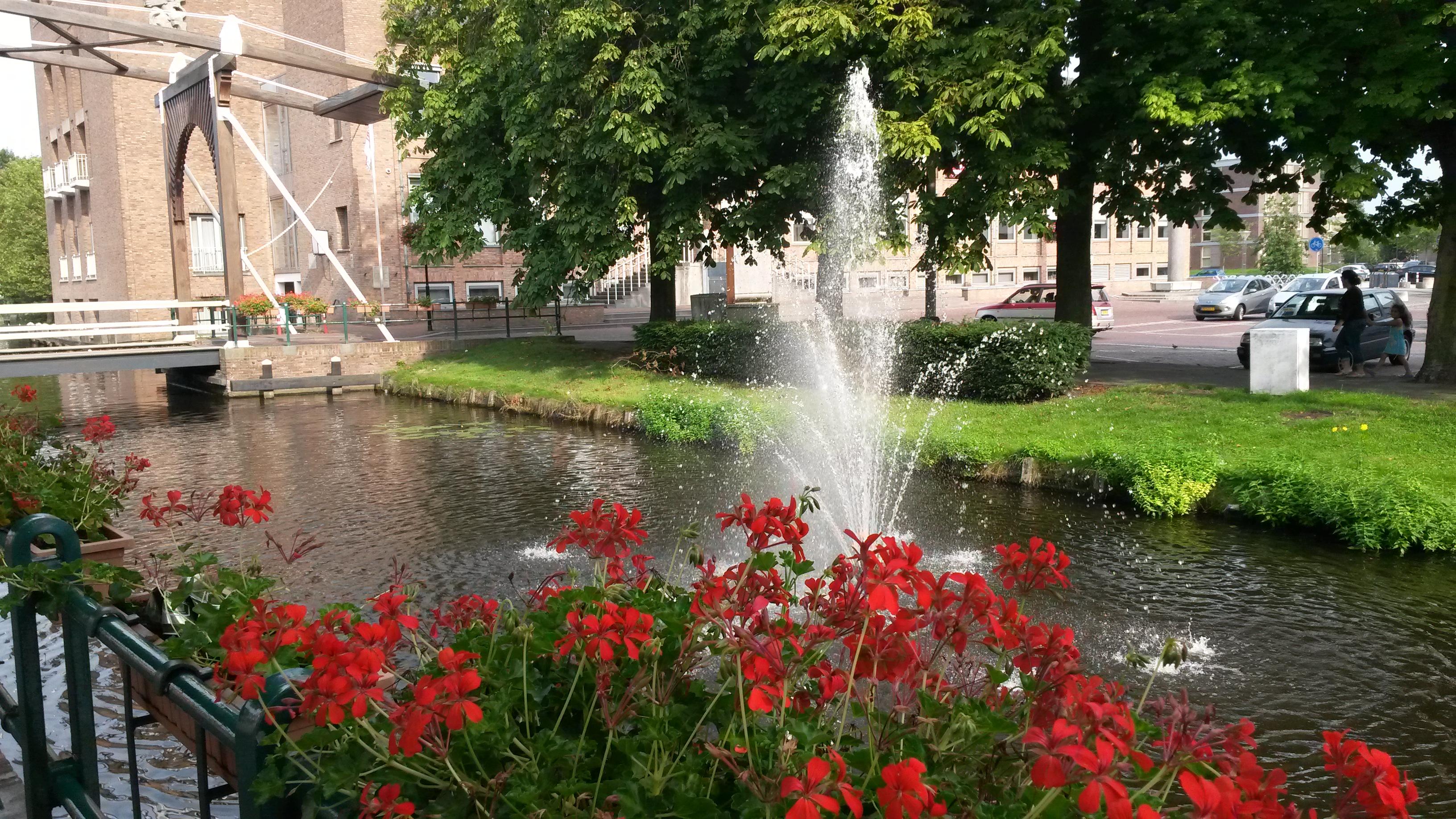 entrees van Aalsmeer groener