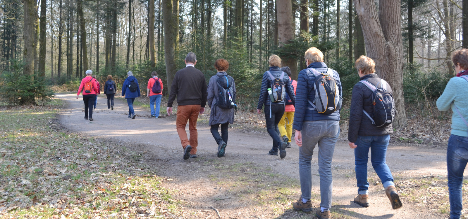 4e Wandel Challenge in het Amsterdamse Bos