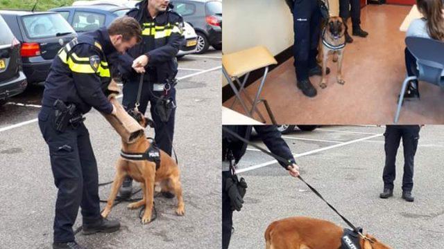 agenten met honden op Jozefschool